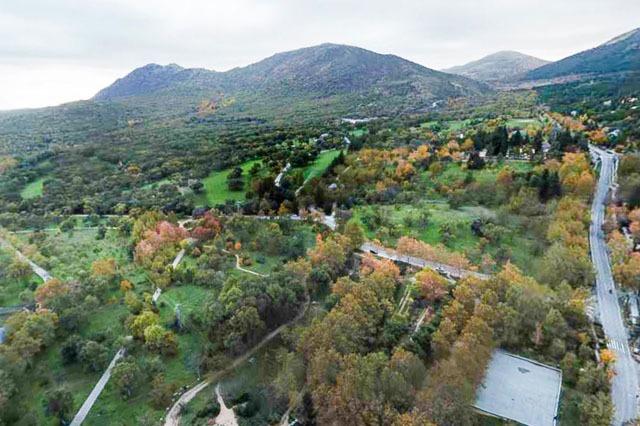 Vista aérea de Bosque de La Herrería